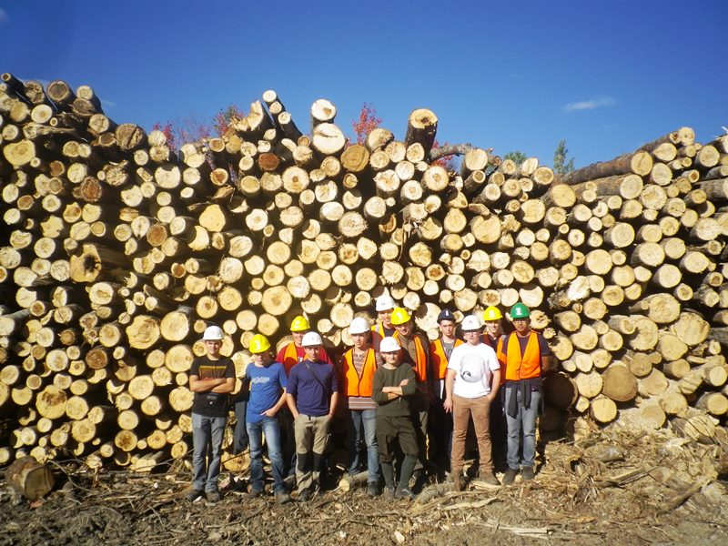 Visite chantier forestier 2 Canada